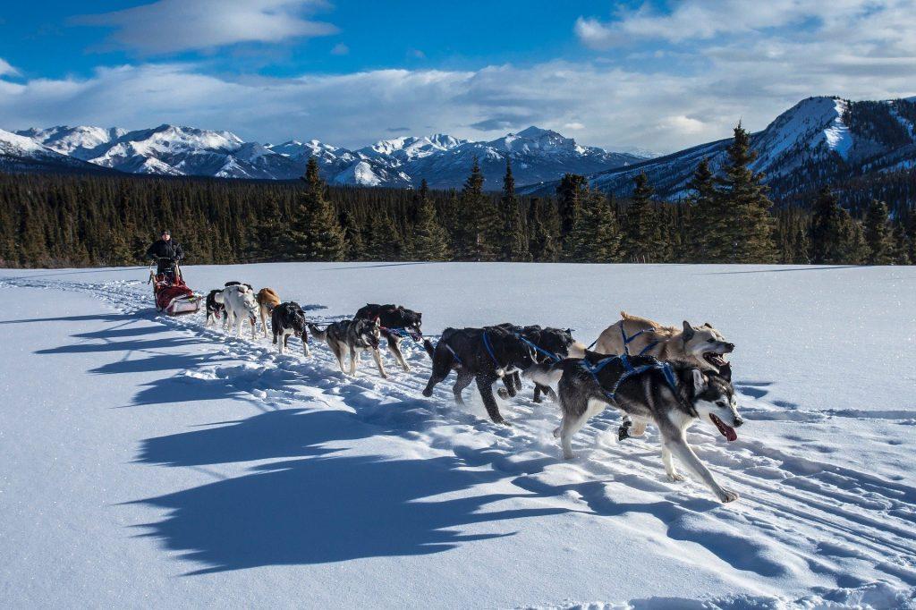 Alaska Pixabay - Seguir Viajando Agencia de Viajes