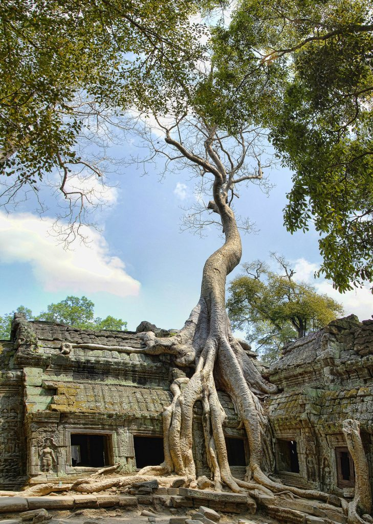 Camboya Angkor Pixabay - Seguir Viajando Agencia de Viajes
